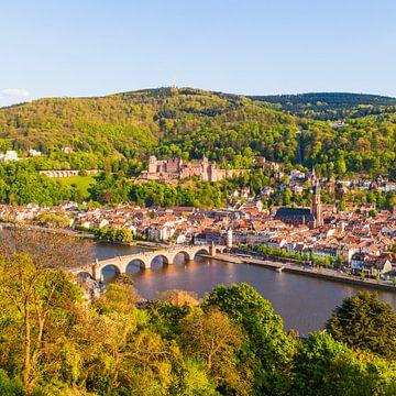 Heidelberg met kasteel Heidelberg van Werner Dieterich