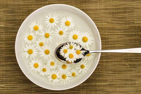 A spoon full of summer 2 van Birgitte Bergman