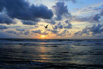 Zonsondergang aan zee von