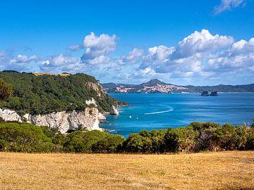 Kliffen en Baaien op het Coromandel Peninsula in Nieuw-Zeeland van Rik Pijnenburg