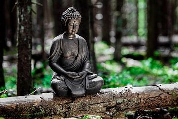 Meditatie van Jürgen Wiesler