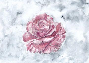Roze rozenbloesem van Sandra Steinke