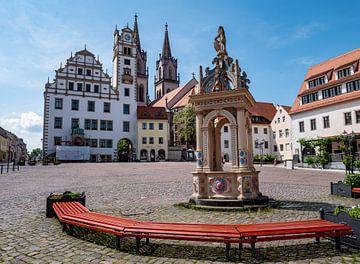 Marktplatz von Oschatz in Sachsen von Animaflora PicsStock