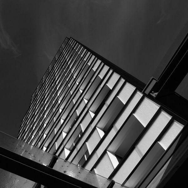 Zwartwit lijnen van Ruud Peters