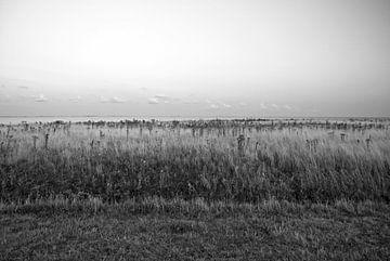 Foto am Ijsselmeer. von Therese Brals