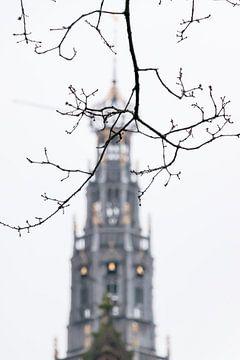 Turm der Grote Sint Bavokerk in Haarlem, Niederlande von Simone Neeling