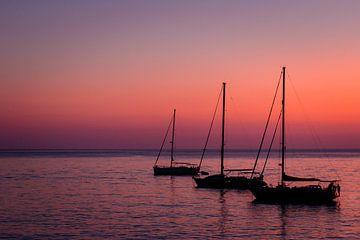 Sunset Sailboats - Zeilboten bij zonsondergang van Marly Tijhaar