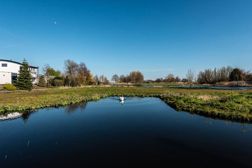 Wasserlandschaft von Brian Morgan
