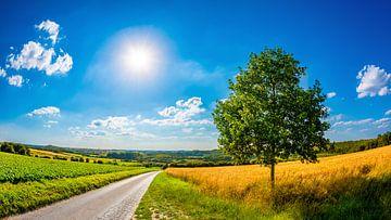 Summer Landscape van Günter Albers