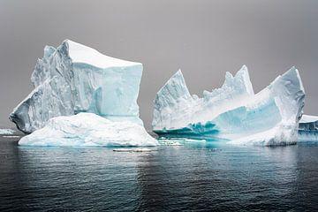 Antarctica 1 van Arjan Blok
