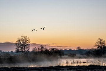 Sonnenaufgang von Angela Stouten