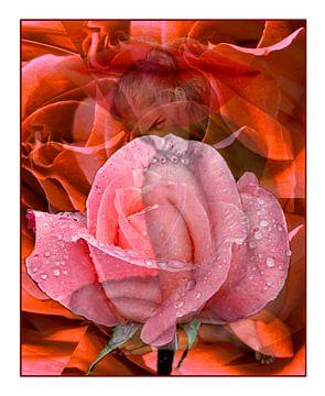 In Rosen gebadet van