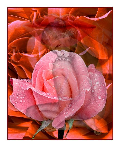 In Rosen gebadet van Gertrud Scheffler