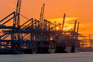 5 op een rij tijdens zonsondergang Maasvlakte te Rotterdam