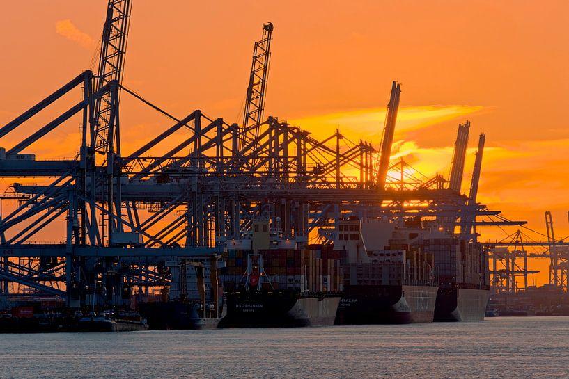 5 in einer Reihe bei Sonnenuntergang Maasvlakte in Rotterdam von Anton de Zeeuw