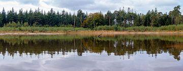 Panorama van een bosrand met weerspiegeling het het water van een ven. van Henk Van Nunen