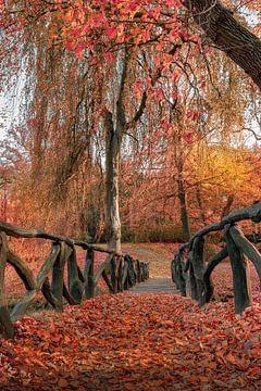 Herfst in Friesland 3. van Marcel Kieffer