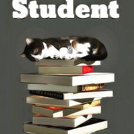 Katzen: Student von Jan Keteleer