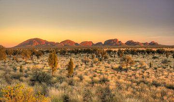 Outback Australia sur Arthur de Rijke