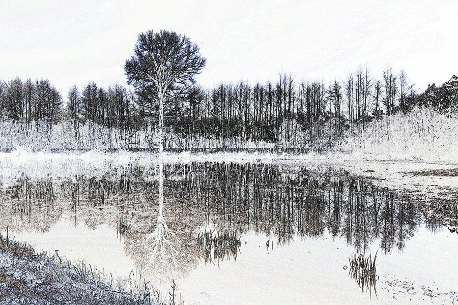 Bomen  in zwart-wit-2 van Yvonne Blokland
