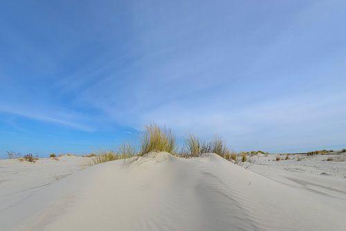 Duinen op het strand