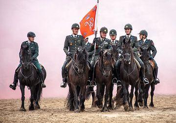 Cavalerie van Cees Petter
