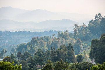 Beboste Bergen: Zuidelijk Oeganda van The Book of Wandering