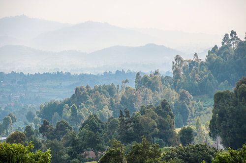Beboste Bergen: Zuidelijk Oeganda