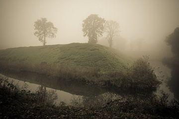Bomen in een mistig landschap. van Adri Vollenhouw