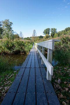 Veldpark Zaandam van Peter Bartelings Photography