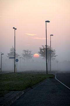 Sonnenaufgang von Ulrich Fuchs
