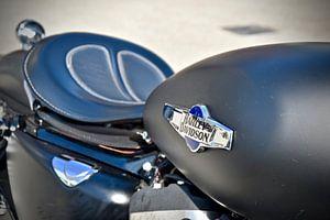 Harley Davidson Legende unter den Motorrädern von Jan Radstake