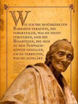Voltaire zeitlos von Dirk H. Wendt