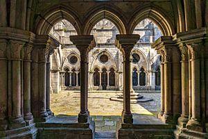 Kathedraal van Porto van Peter Schickert