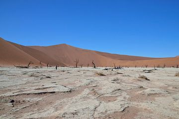 Sossusvlei (Deathvlei) Namibië (Namib-Naukluft Park van Merijn Loch