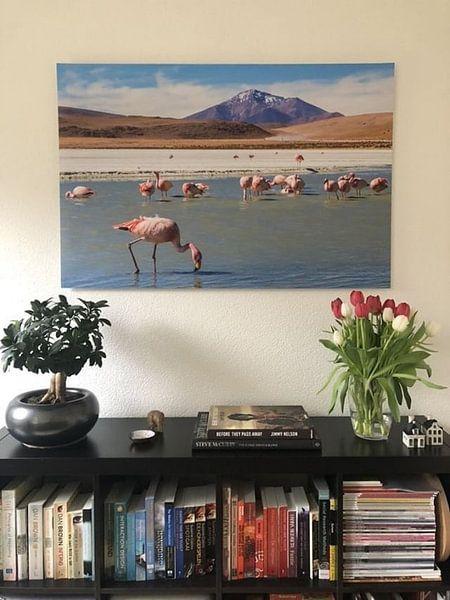 Klantfoto: Hedionda lagune met flamingo's van Eveline Dekkers