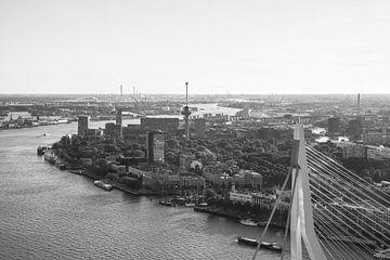 Het topje van de Erasmusbrug in Rotterdam van MS Fotografie | Marc van der Stelt