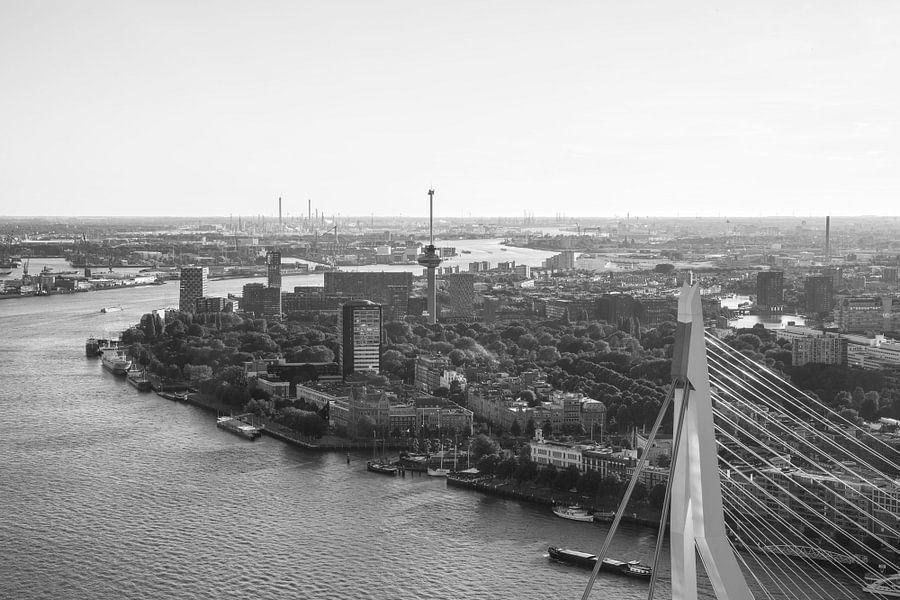 Het topje van de Erasmusbrug in Rotterdam