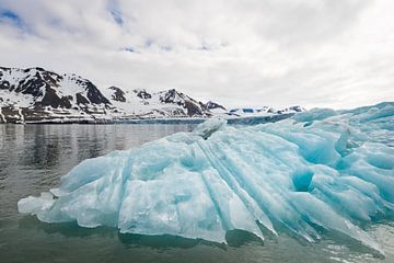 Grillige ijsberg van Carol Thoelen