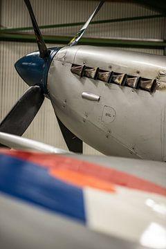 Neus van een Spitfire van Floris Oosterveld