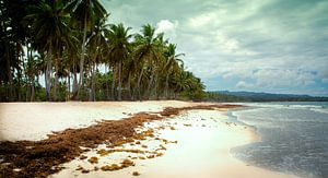Paradijs eiland van
