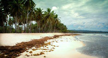 Paradijs eiland sur