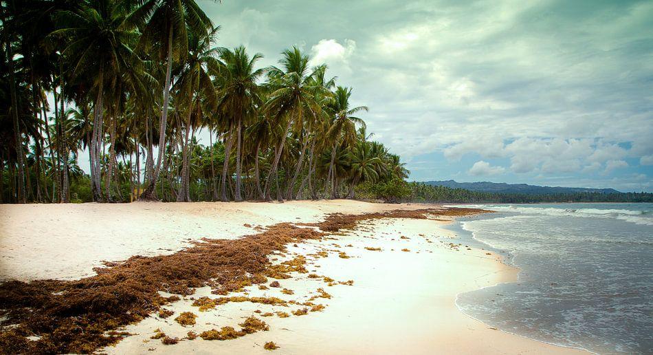 Paradijs eiland