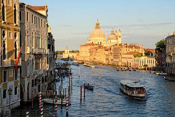 Uitzicht vanaf Ponte dell'Accademia in Venetie van Remco Swiers