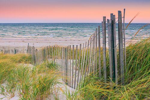 Sand Dune Fences, Cape Cod, USA van Henk Meijer Photography