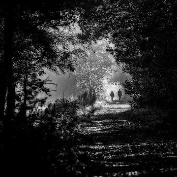 licht aan het einde van de tunnel van Willem  Overkleeft