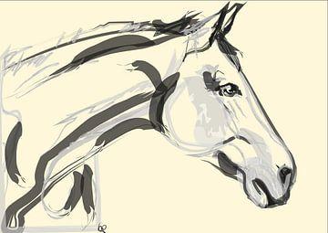 Schönes Pferd von Go van Kampen