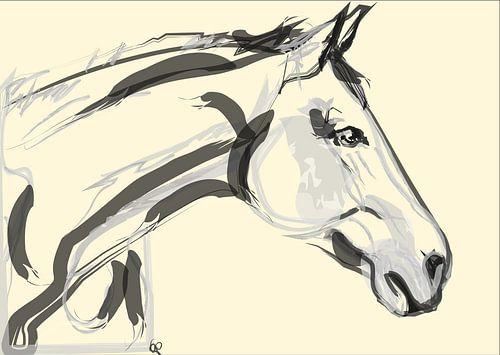 Schönes Pferd von