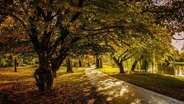 wandelen in de herfst van nol ploegmakers