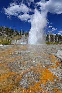 Grand Geyser in Yellowstone